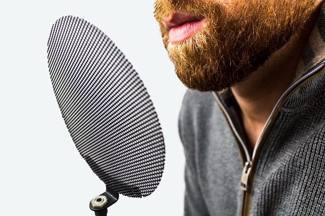 how to choose a microphone - POP filter